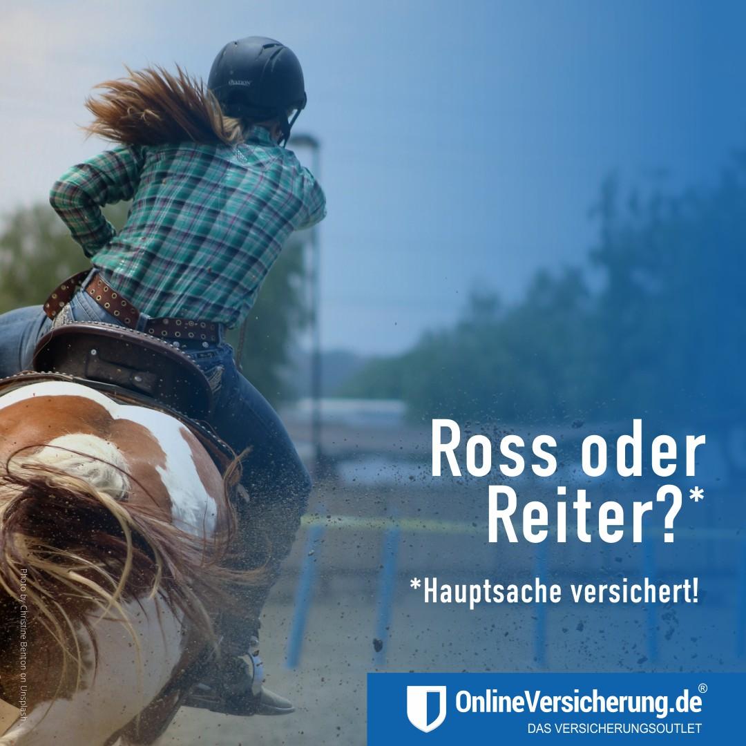 OnlineVersicherung - Pferdehalterhaftpflichtversicherung