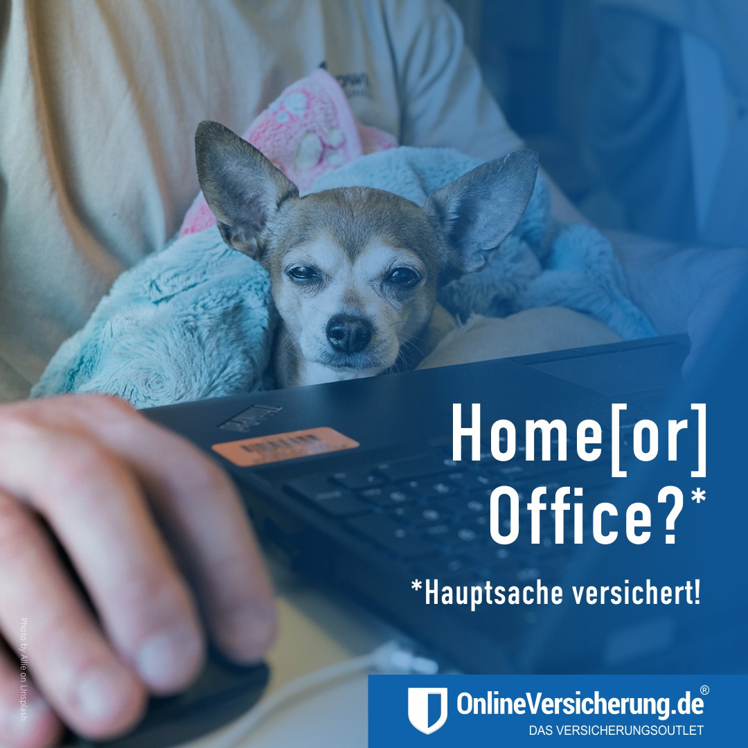 Home or Office? Hauptsache versichert!