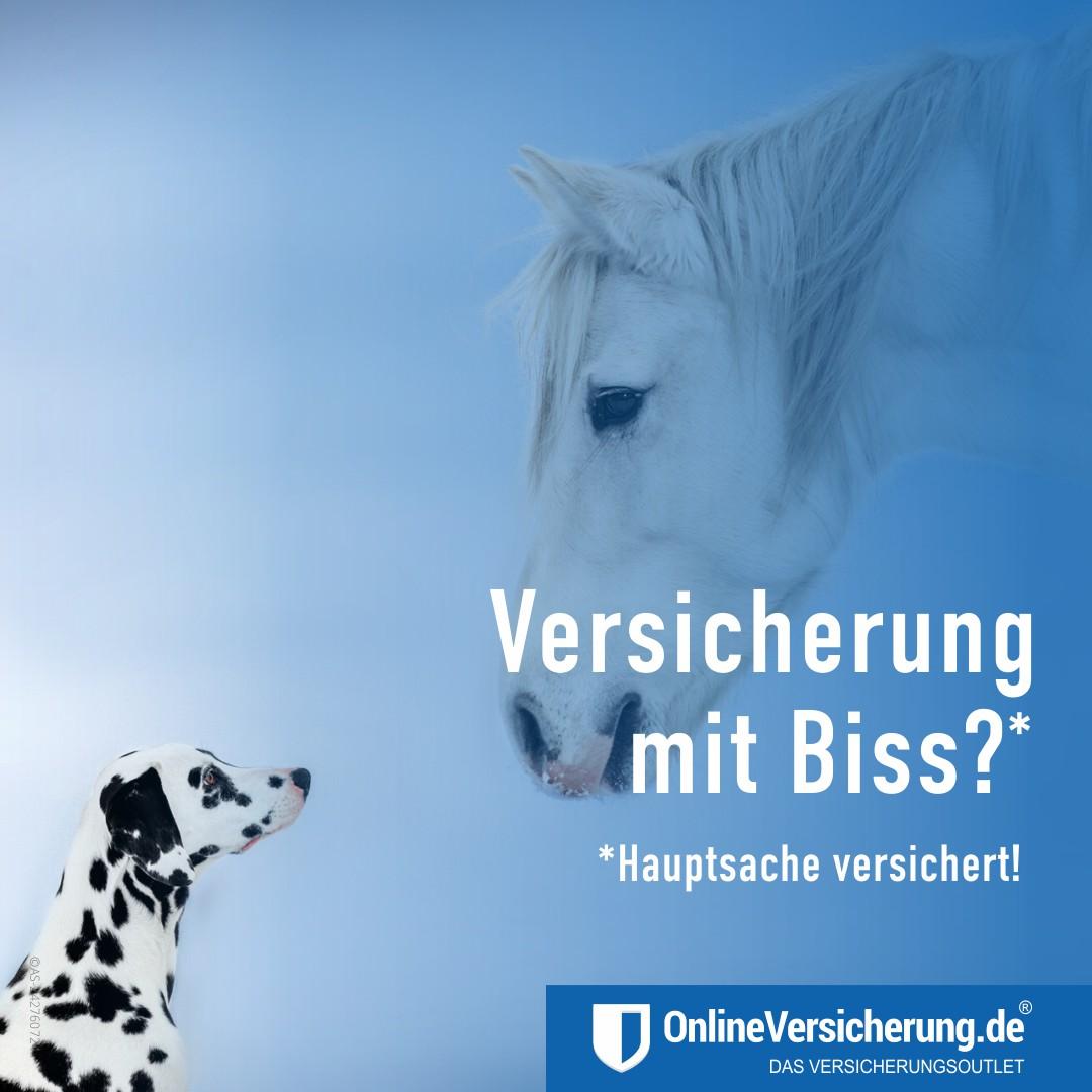 Versicherung mit Biss! Tierhalterhaftpflicht.