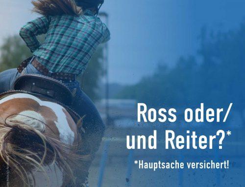 Tipps für Ross und Reiter zur optimalen Absicherung