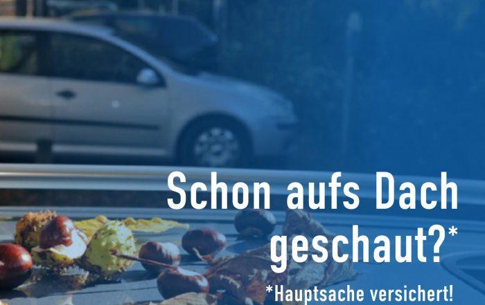 Kastanienhagel im Herbst (auf dem Auto) ist nicht Teilkasko versichert!